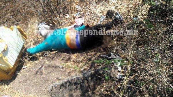 Abandonan cadáver baleado en lote baldío de Fraccionamiento sahuayense