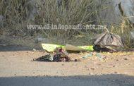 Abandonan dos cabezas humanas en Zamora