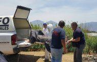 Identifican al hombre ahogado en río de Jacona