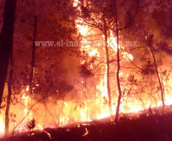 A la alza los incendios forestales