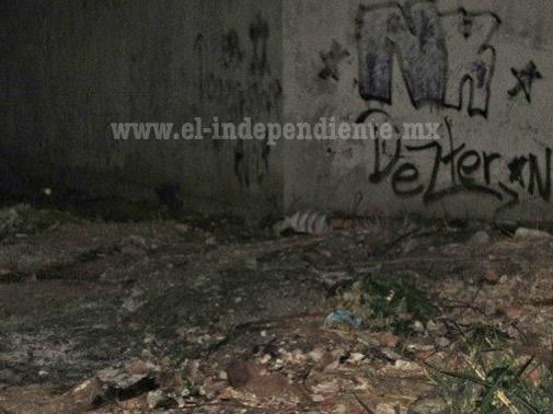 Encuentran cadáver baleado en predio del Fraccionamiento Rivera Paraíso