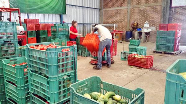 40 toneladas de productos perecederos  recibe mensualmente banco de alimentos