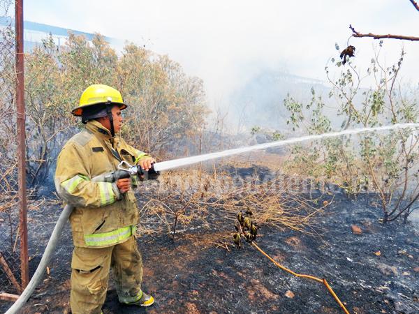 Bajo control los incendios forestales en Jacona