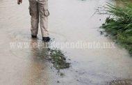 Sigue en aumento la cantidad de hectáreas afectadas por lluvia en Zamora