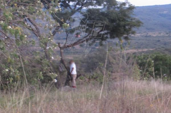 Suman 2 los hombres hallados ahorcados en la colonia Francisco J. Múgica de Jacona