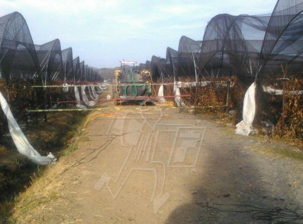 Joven campesino fallece en trágico accidente laboral