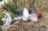 Matan a un hombre en Zamora