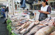 Jurisdicción sanitaria verificará establecimientos de pescado y marisco