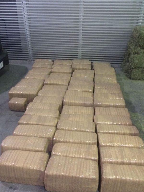 Militares aseguran 800 kilos de marihuana en Zamora