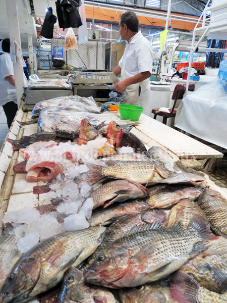 A la baja consumo de pescados y mariscos
