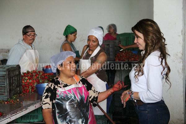 En Zamora y con Eréndira Castellanos Diputada, ganamos todos