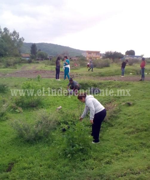 Confían en lograr plantación de 3 millones de árboles en Zamora