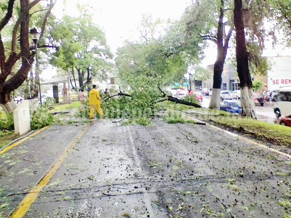 Daños mínimos registrados durante el temporal de lluvias