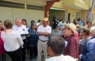 Temor ante posible extensión de chinches en zona agrícola del valle de Zamora