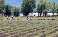 Agricultores pugnarán por frenar crecimiento hacia zona norponiente