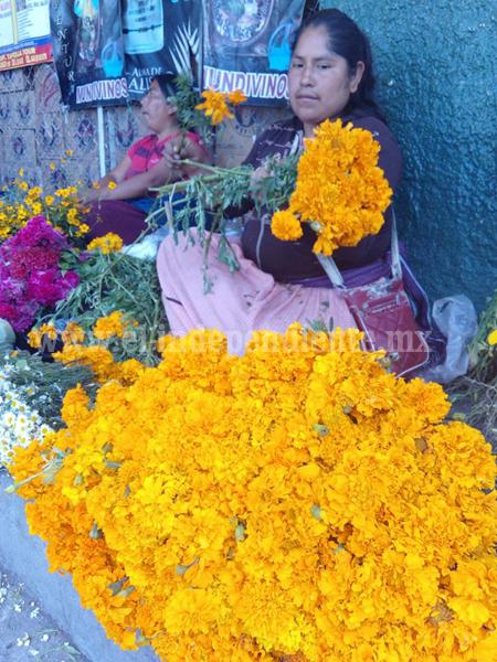 Disminuyó invasión de floristas de otros estados en calles del mercado Hidalgo