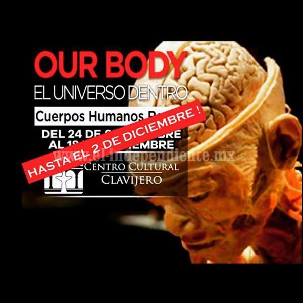 """""""Our Body, El Universo Dentro"""", se queda en el Clavijero hasta el 2 de diciembre"""