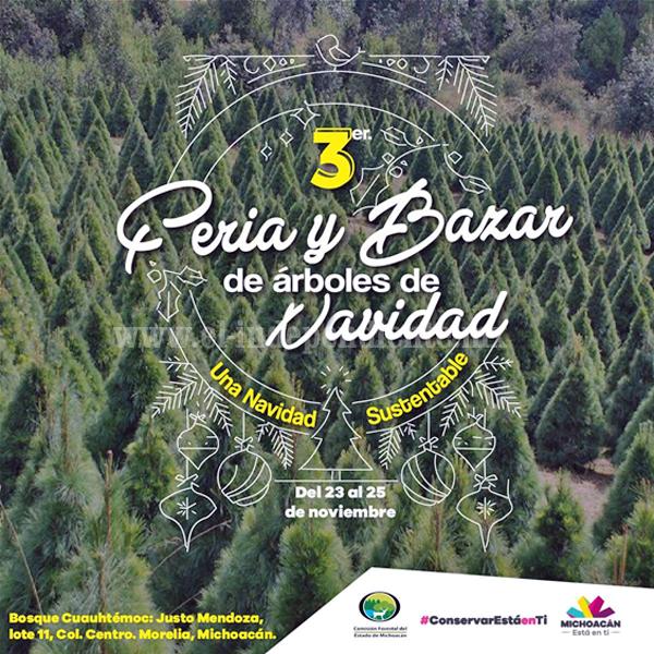 Michoacán, 4º lugar nacional en producción de árboles de Navidad