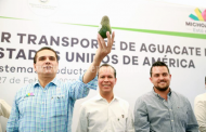 Zitácuaro, primer municipio del Oriente del estado en exportar aguacate a EU