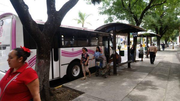 Ahora resulta que particulares son culpables de falta de paraderos para transporte público