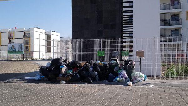 Denuncian inoperancia de servicio de recolección de basura