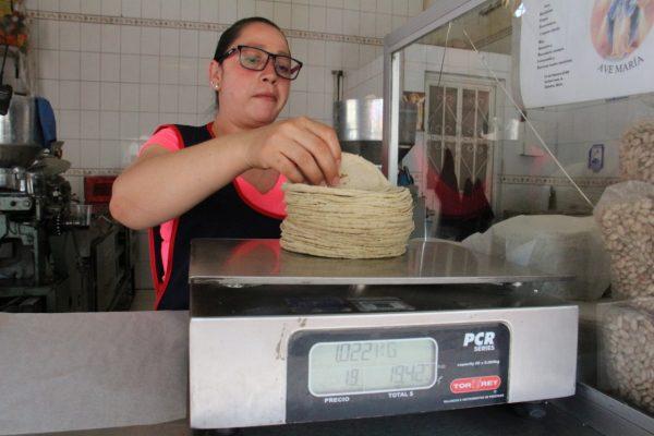 Recobra fuerza idea de incremento en precio de kilo de tortillas en municipio