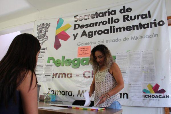 Continúa recepción de proyectos en ventanilla de SEDRUA