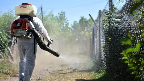 Autoridades sanitarias se preparan para afrontar aumento en riesgo de dengue