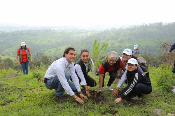 Se suman medios de comunicación a recuperación de zonas boscosas
