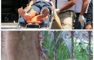 Atacan a jóvenes en Jardines de Catedral; hay dos muertos y dos heridos