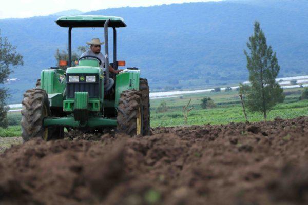 Se realizará Foro de Agricultura Sustentable en el Cultivo de Maíz