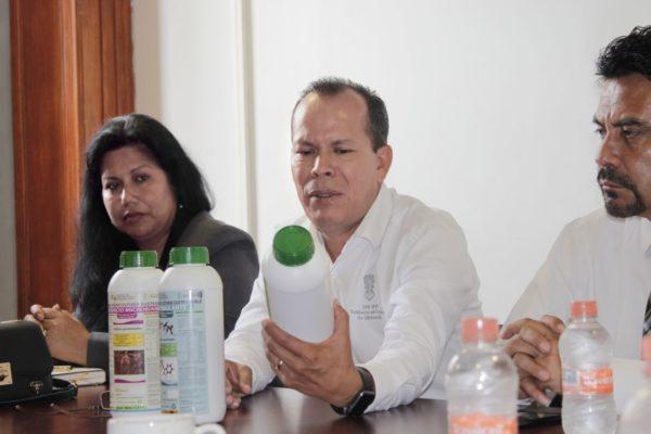 Mil hectáreas de lenteja, al programa de Agricultura Sustentable: Sedrua