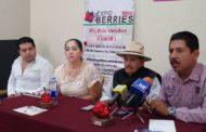 Región Zamora, potencia en cuanto a producción de berries