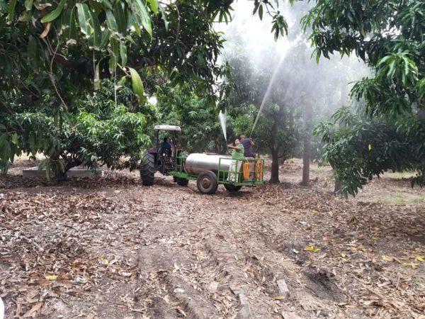 Trigo, alfalfa y cártamo, al Programa de Agricultura sustentable: Sedrua