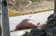 Hombre es acribillado a balazos en Tamandaro
