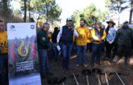 Inicia Michoacán combate a incendios forestales