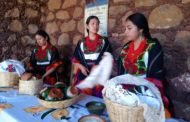 Carece Michoacán de una ley integral indígena