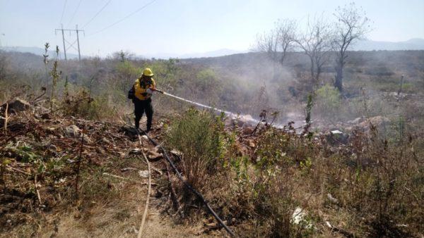Arranca temporal de quema de pastizales; altas temperaturas un riesgo para incendios
