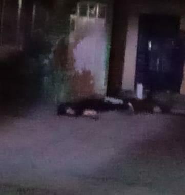 Mujer es asesinada en la Valencia Segunda Sección