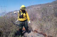 Incendios forestales provocan más de 40 hectáreas siniestradas en este año