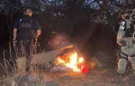 Aseguran SSP y GN droga en un narcocampamento, en Zamora