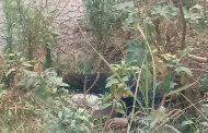 Encuentran un ejecutado a un costado del Río Nuevo de Zamora