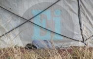 Hallan un ejecutado en la zona agrícola de Zamora