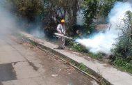 SSM, sin bajar la guardia en las acciones contra dengue, zika y chikungunya