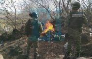 GN y SSP destruyen narcocampamento en Zamora