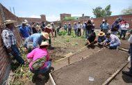 Con Agricultura Sustentable, nueva reingeniería agrícola en Michoacán
