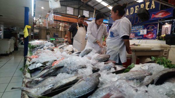 Cambio climático genera inestabilidad en precio del pescado