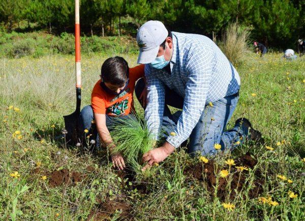 Cerca de obtener declaratoria del Cerro Grande como Área Natural Protegida