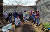 Con gran aceptación, huertos de traspatio de Agricultura Sustentable en Michoacán