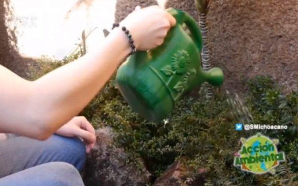 Cuidar, conservar y proteger el agua: responsabilidad de gobierno y sociedad